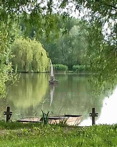 Horgásztó csendélet