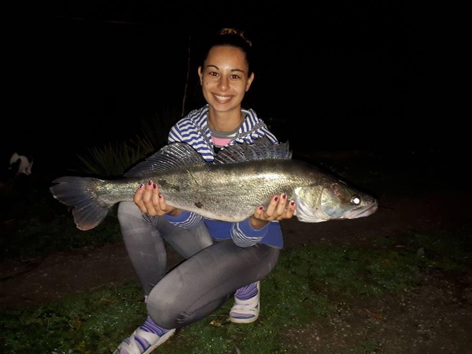 Horgásztó süllő